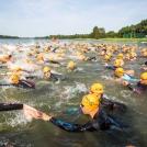 Triathlon Lwa we współpracy z Polskim Związkiem Triathlonu